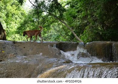 Waterfalll at Num Tok Chet Sao Noi National Park, Thailand
