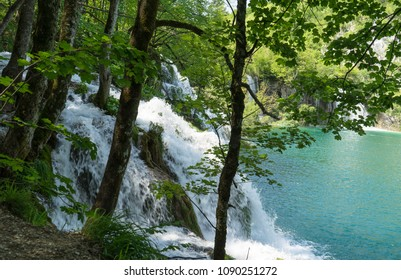 Waterfalls behind the trees at Plitvice Lakes National Park in Croatia