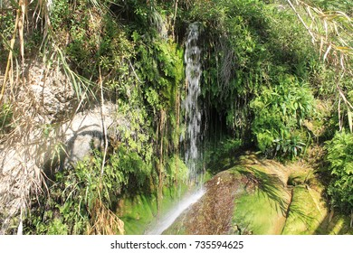 Waterfalls between forest foliage, rocks eroded by transparent water that runs through the landscape. Harmony peace, tranquility and disconnection. Good vibrations.