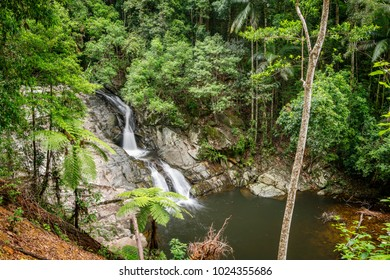 Waterfalls and cascades in Queensland's Springbrook National Park. The Cougal Cascades track follows Currumbin Creek alongside a series of rock pools and small waterfalls. Gold Coast, Queensland.