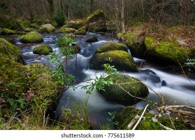 Waterfalls flowing river over green mossy stones. Outdoors and in nature.