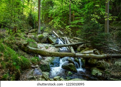 Waterfalls, Ilse cases rushing through a green forest