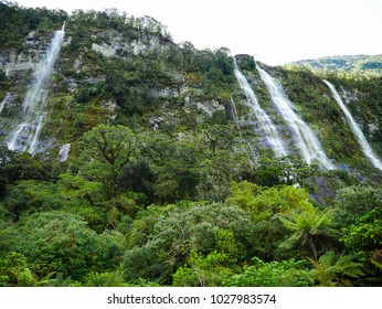 Waterfalls in the Jungle of the Fiordland Nationalpark, New Zealand