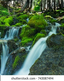 Waterfalls in Mount Rainier National Park near Spray Park in Washington state