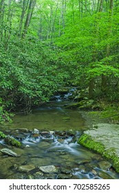 Waterfalls on Rhododendron Creek in Greenbrier, Great Smoky Mountains NP ,TN