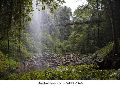 Waterfalls and rainforest Waterfall Way in Australia