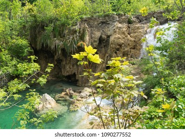 Waterfalls through the foliage at Plitvice Lakes National Park in Croatia