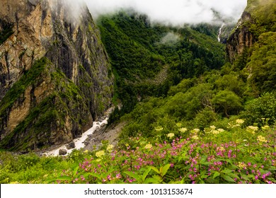 Waterfalls at Valley of Flowers, Nanda Devi biosphere national park. It is a beautiful Trek in Uttarakhand. Amazing landscape, mountains, hills, foggy, misty, rain, monsoons, colorful flowers.