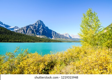 Waterfowl Lake with autumn leaves and Mount Chephren, Banff National Park, Canadian Rockies, Alberta, Canada