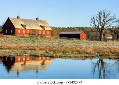 Waterfront rural morning landscape with farm buildings and bare tree on a field. Frost on the ground. A windless and sunny day. Location Nattraby, Karlskrona, Sweden.