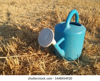 Watering can, cereal background freshly harvested. Contrast of blue and yellow colors. Orchard utensil. Classic container for manual irrigation system in the garden. Rural environment.