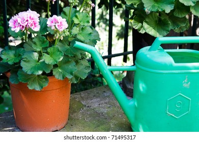 Watering can in front of a flower garden