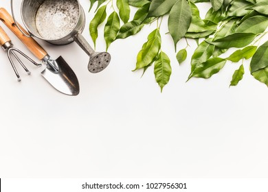 Watering can with gardening tools and green bunch of twigs and leaves on white desk background, top view, border