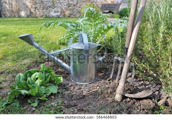 Watering Can Gardening Tools Vegetable Garden Stock Photo Edit