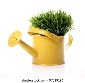 Watering can and grass over white background