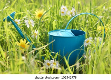 Watering can on grass with daisy flower