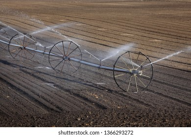 Watering of cultivated field in early spring, irrigation equipment spraying water to land