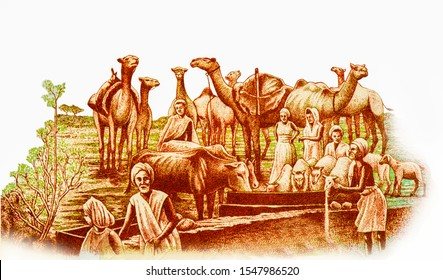Watering and feeding animals: men and women with camels, sheep and cows at feeding trough. Portrait from Somalia 50 Somali Shillings 1983-1989 Banknotes.