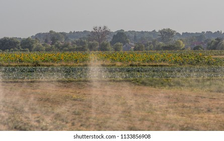 Watering the field in the dry season during the summer in the small village near the Warsaw