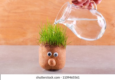 Watering head with grass on top, over wooden background