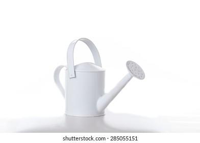 Watering in high key