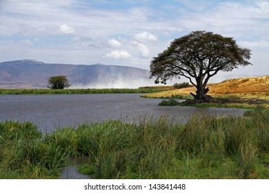 A watering hole in the Ngorongoro crater of Tanzania, Africa.