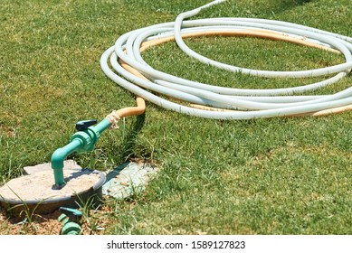 watering hose twisted on green grass in summer day