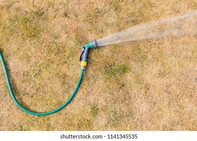 Watering a parched lawn with hosepipe