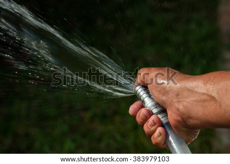 Watering to plant with a hose