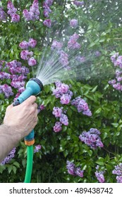 Watering plants and gardening