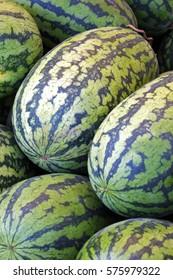 watermelon fruit in market