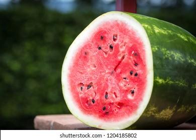 Watermelon lying on a wall