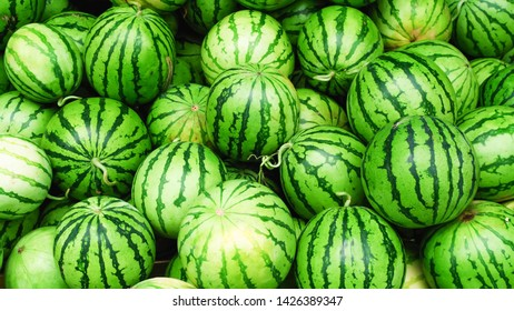 Watermelon pattern, round green ball Stack together in the fresh market