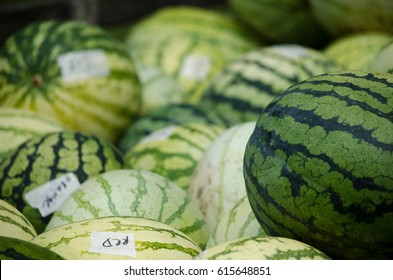Watermelon for sale at a Farmers' Market