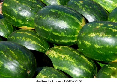 Watermelons for sale at outdoor market place