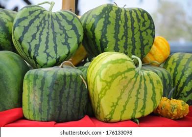 watermelon's shapes