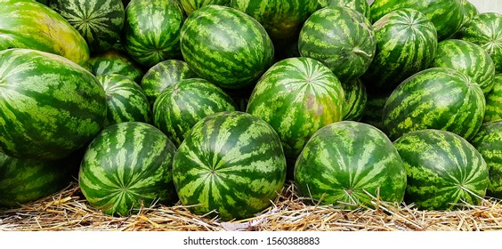 watermelons stacked on top of each other