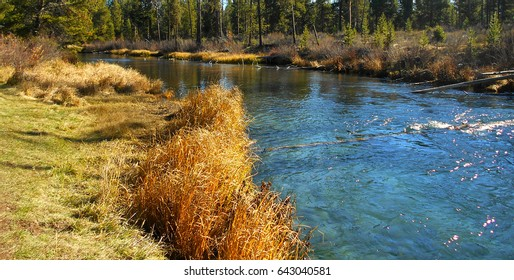 Waters Blue - Fall River near Sunriver, OR