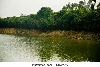 Waters of a lake with green trees around the lakeside area