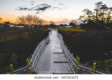 Waterview Glades Bridge, Auckland New Zealand