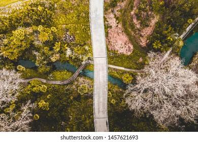 Waterview Glades Bridge, Auckland New Zealand