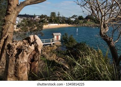 Watson Bay Walk, Sydney, Australia