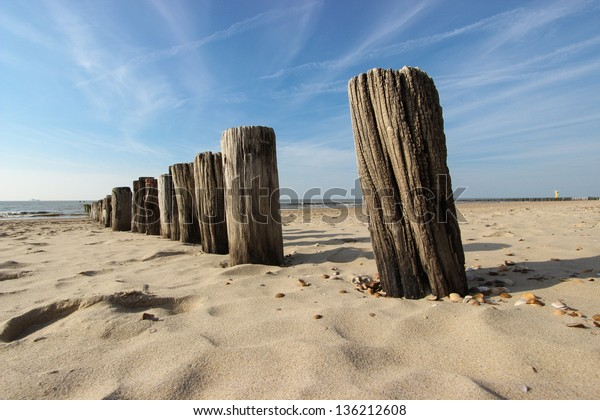 Wave breaker made of wooden stakes on the beach.