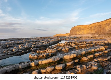 Wave Cut Platforms and cliffs of Limestone (Blue Lias)  at Kilve Beach, Somerset in warm afternoon sun