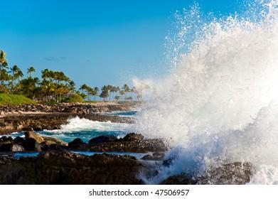 Wave hits the shore. Oahu. Hawaii