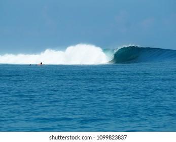 Wave in Mentawai, Indonesia