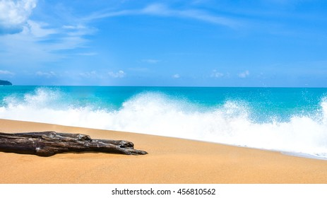 Wave of the sea on the sand beach and Ocean Tree Timber,Beautiful beach at Phuket, Thailand Timber on the beach. Beach during the sunshine day, clear and hot with wave foam sea.