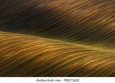 Waved Cultivated Row Field With Beautiful Light-Shadows.  Rustic Autumn Landscape In Brown Tones. Striped Undulating Abstract Landscape With Plowed Field.Natural Rows Background In Brown Tones