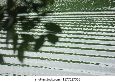 The waves on  green surface