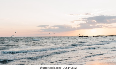 Waves on the ocean shore during sunset. Gulls flying over the water during sunset on a summer evening.